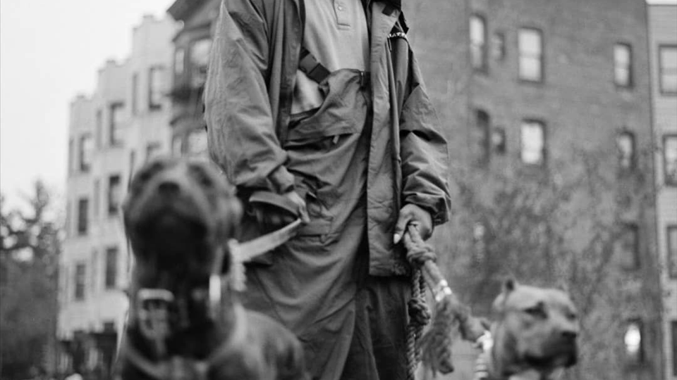 DMX, rough ryder and hip hop pioneer- Hip Hop Bing